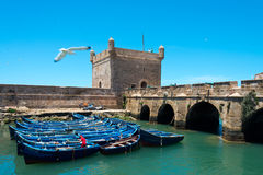 Förtöjde fisherboats i essaouiraen, Marocko Royaltyfri Fotografi