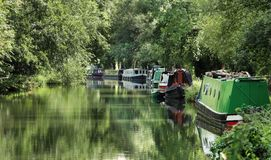 Förtöjde Narrowboats på en engelsk kanal fotografering för bildbyråer