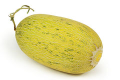 förtjänad melon Royaltyfri Fotografi