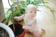 Förtjusande behandla som ett barn flickan med en blommakruka Arkivbild