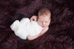Förtjusande behandla som ett barn pojken som sover Fotografering för Bildbyråer