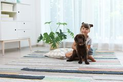 Förtjusande choklad labrador retriever och liten flicka arkivfoton