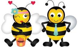 Förtjusande förälskade honungbin Royaltyfri Bild