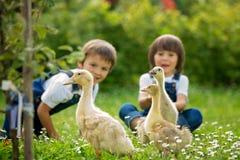 Förtjusande förskole- barn, pojkebröder som spelar med litet D fotografering för bildbyråer