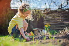 Förtjusande förskolebarnflicka i gul kofta som planterar blommor i solig trädgård för vår Royaltyfri Foto
