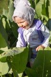 Förtjusande flicka för litet barn som går på naturen på sommar Royaltyfria Bilder