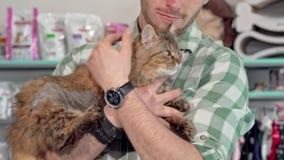 Förtjusande fluffig katt i armarna av dess ägare på den veterinär- kliniken lager videofilmer
