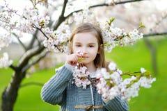 Förtjusande liten flicka i blommande körsbärträdgård Royaltyfri Foto