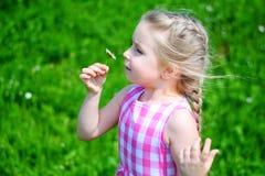 Förtjusande liten flicka med tusenskönan på solig sommardag Arkivfoton