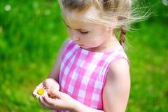 Förtjusande liten flicka med tusenskönan på sommardag Fotografering för Bildbyråer