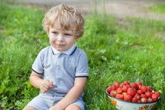 Förtjusande litet barn med bunkejordgubbar på organisk lantgård Royaltyfri Bild