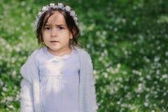 Förtjusande litet barnbarnflicka i ljus - blå elegant dräkt som går och spelar i blommande vårträdgård Arkivbild
