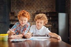 Förtjusande lockig haired broder som tillsammans målar Arkivbild