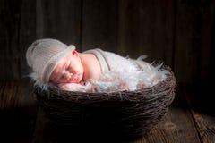 Förtjusande nyfött behandla som ett barn att sova i korgen Royaltyfria Foton