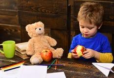 Förtjusande pojke som äter det läckra äpplet Unge som delar mellanmålet med den favorit- leksaken Elev som spelar under avbrott fotografering för bildbyråer
