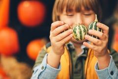 Förtjusande pys som väljer halloween pumpa royaltyfri foto