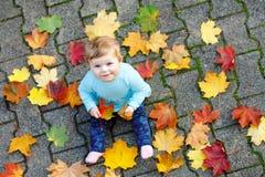 Förtjusande små behandla som ett barn flickan i höst parkerar på den soliga varma oktober dagen med eken och lönnlövet kombinatio royaltyfri foto