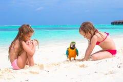 Förtjusande små flickor med den stora färgrika papegojan Arkivbilder