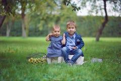 förtjusande ungar royaltyfri fotografi