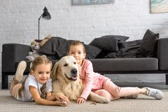 förtjusande ungar som kramar golden retrieverhunden, medan sitta på golv royaltyfria foton