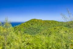 Förtjust Ferdinand naturlig reserv, Seychellerna royaltyfri bild