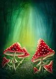 Förtrollad mörk skog stock illustrationer