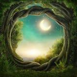 Förtrollad mörk skog Arkivfoton