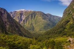 Förtrollad skog - den Queulat nationalparken - Carretera Austral Chile, Patagonia royaltyfria bilder