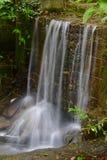 Förtrollade Forest Waterfall arkivfoton