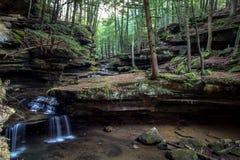 Förtrollade Forest Waterfall Royaltyfri Foto