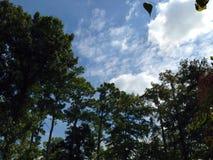 Förtrollande himmel Arkivfoton
