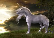 Förtrollande vita Unicorn Watching en solnedgång Royaltyfri Foto
