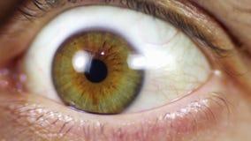 Förvånade ögon arkivfilmer