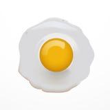förvanskad white för bakgrundsägg omelett Vektorillustration av omelett Royaltyfria Foton