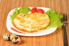 Förvanskade ägg från vaktelägg Royaltyfri Fotografi
