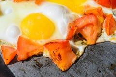 Förvanskade ägg med grillade tomater royaltyfria foton