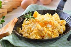 Förvanskade ägg Royaltyfri Fotografi