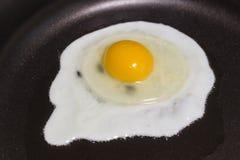 förvanskat ägg Royaltyfri Fotografi