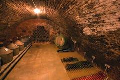 förvara i källare wine Royaltyfria Bilder
