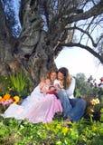 fött första paradis Royaltyfria Bilder