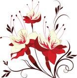 Fúcsia da flor do vetor, ramalhete decorativo ilustração stock