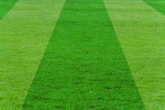 Fútbol-campo Foto de archivo libre de regalías
