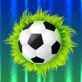 Fútbol con la hierba libre illustration