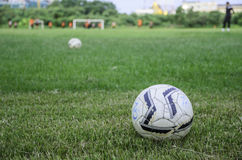 Fútbol de campos Imagenes de archivo
