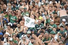 Fútbol de Palmeiras fotografía de archivo