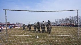 Fútbol del elefante - festival del elefante, Chitwan 2013, Nepal Foto de archivo libre de regalías