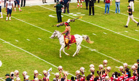 Fútbol del Seminole del estado de la Florida Fotos de archivo