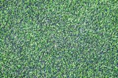 Fútbol y x28; soccer& x29; campo Fotos de archivo libres de regalías