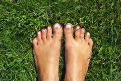 Füße auf dem Gras Stockbild