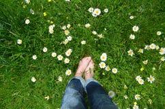 Füße auf einer Blumenwiese Lizenzfreies Stockfoto